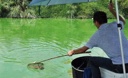 夏季钓鱼都有哪些黄金时段