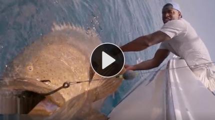 奇葩男用大鱼当诱饵 居然引来巨型大怪鱼!
