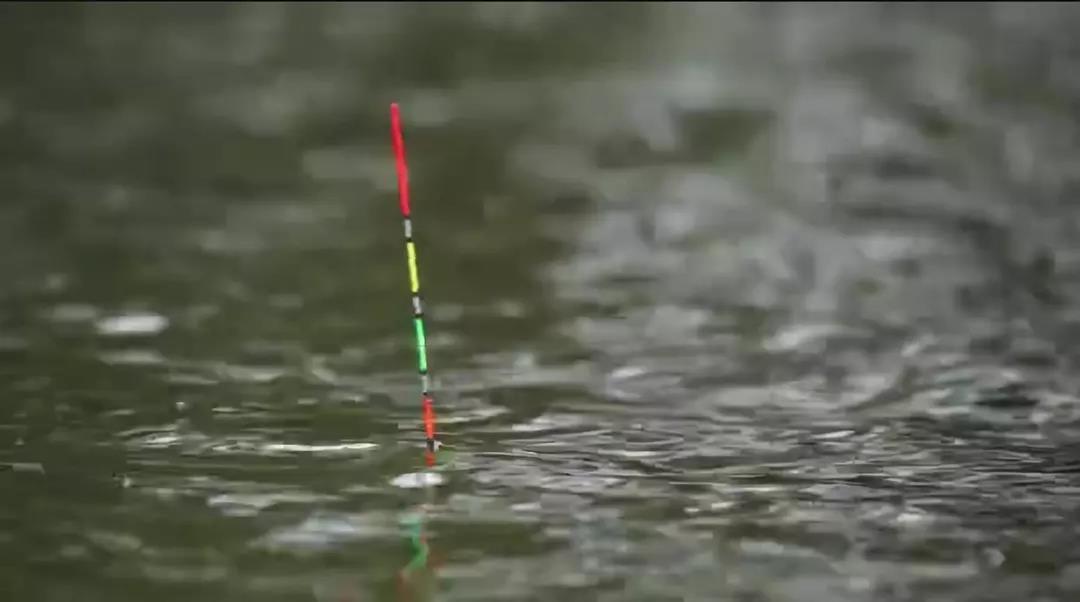 冬季钓鱼这样调漂效果更好!