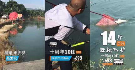 意外!黑坑抢鱼遭遇14斤大草鱼!0.8的子线竟然刚住了!