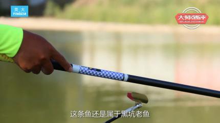 康江波:黑坑劲道很猛的老鲤鱼 10秒就回来