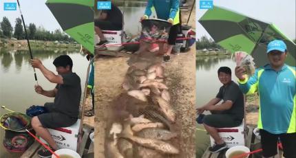 鲤鱼爆护的日常 110斤 坐标天津